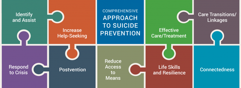 A comprehensive approach to suicide prevention combines nine major strategies